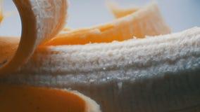 Banane de corps avec la peau sur une fin blanche de macro de fond vers le haut de vue clips vidéos