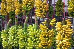 Banane in der Marktverkaufsfrucht Stockbilder
