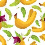 Banane e fiore senza cuciture del modello royalty illustrazione gratis