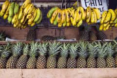 Banane ed ananas Fotografie Stock Libere da Diritti