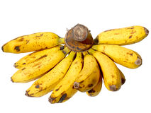 Banane Fuit Photos stock