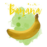 Banane gezeichnet in Aquarell Vektor ENV 10 Stockfotos