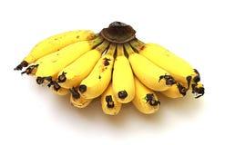 Banane isolate sui precedenti bianchi Fotografie Stock