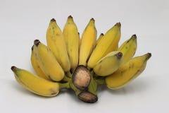 Banane mûre et grande photographie stock