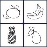 Banane, mangue, ananas, avocat Images libres de droits