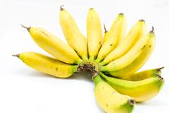 Banane mature di Yelloe Fotografia Stock