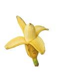 Banane mit Weg Stockbilder
