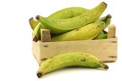 Banane non mature di cottura (banane del plantano) Fotografie Stock Libere da Diritti
