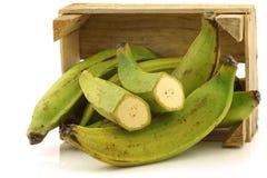 Banane non mature di cottura (banane del plantano) Fotografie Stock
