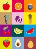 Banane orange d'avocat de prune de raisins d'ananas de cerise de pastèque de pomme de fruit Image libre de droits