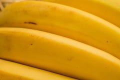 """Banane organiche, †latino """"musa Frutti della banana sul fondo naturale della paglia Fotografie Stock Libere da Diritti"""
