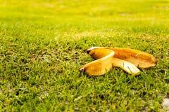 Banane pell auf Gras Umweltverschmutzungskonzept stockfoto