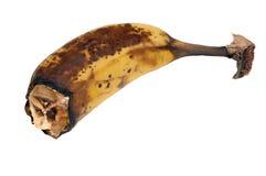 Banane putréfiée photo libre de droits