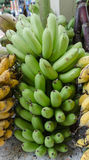 Banane, rohe Banane gegessen als köstliches Gemüse stockbilder