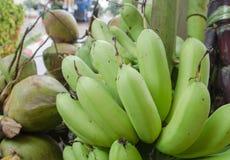 Banane, rohe Banane gegessen als köstliches Gemüse stockbild