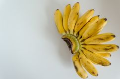 Banane su fondo bianco fotografie stock libere da diritti