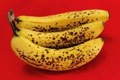 Banane su priorità bassa rossa fotografia stock