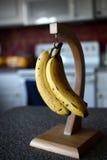 Banane sul gancio Fotografia Stock Libera da Diritti