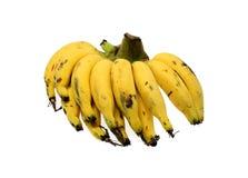 Banane sur le blanc Image stock