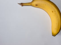 Banane sur le blanc images stock
