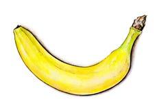Banane sur le blanc Illustration colorée d'aquarelle Fruit tropical Travail manuel Photos libres de droits