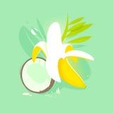 Banane und Kokosnuss Lizenzfreie Stockfotos