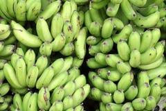 Banane verdi Fotografia Stock