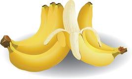 Bananen vector illustratie