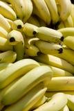 Bananen Royalty-vrije Stock Fotografie