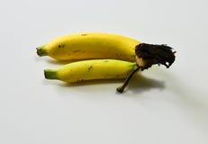 Bananen auf dem Weiß Lizenzfreie Stockfotografie