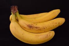 Bananen auf einem weißen Studiohintergrund stockfotografie
