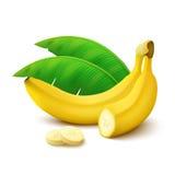 Bananen auf weißem Hintergrund Stockbilder