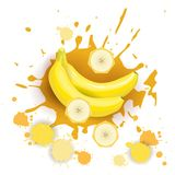 Bananen-Frucht-Logo Watercolor Splash Design Fresh-Naturkost Stockfotografie