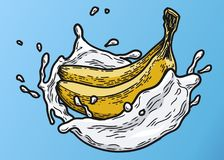 Bananen mjölkar färg Arkivfoton