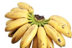 Bananen nannten Dame fingger auf Weiß lizenzfreie stockfotos