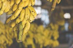 Bananen op de markt Stock Afbeelding