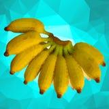 Bananen-Polygon Stockfotografie