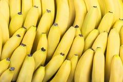Bananen in rijen Royalty-vrije Stock Afbeeldingen