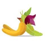 Bananen und Blume auf weißem Feld Lizenzfreies Stockfoto