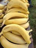 Bananen und mehr Bananen Stockfotos