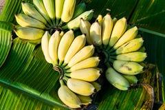 Bananenbündel reif lizenzfreie stockfotografie
