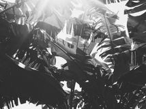 Bananenblätter Stockfotografie