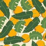 Bananenblätter mit Orangen Stockfotos