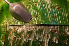 Bananenblatt auf Behälter Stockbild