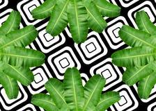 Bananenblatt-Musterhintergrund Stockbilder