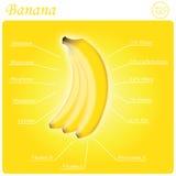 Bananenzusammensetzung Lizenzfreie Stockbilder