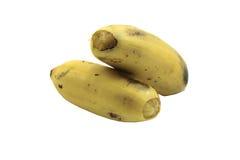 Bananer Royaltyfria Foton