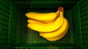 Bananer Arkivfoto