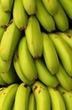 bananer Royaltyfri Foto
