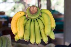 Bananer i en marknad Arkivfoto